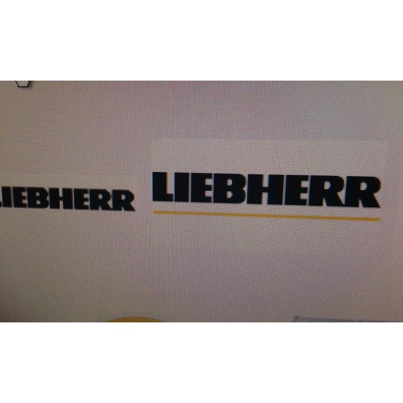 SAT, SERVICIO TÉCNICO, LIEBHERR