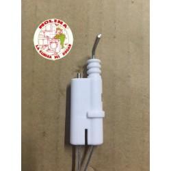 Bujia+electrodo calentador...