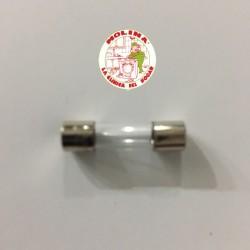 Fusible seguridad 2,5 Amp. 220V, 5x20 mm.